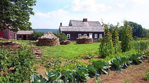 Ross-Farm-Museum-Rosebank-Cottage-Garden